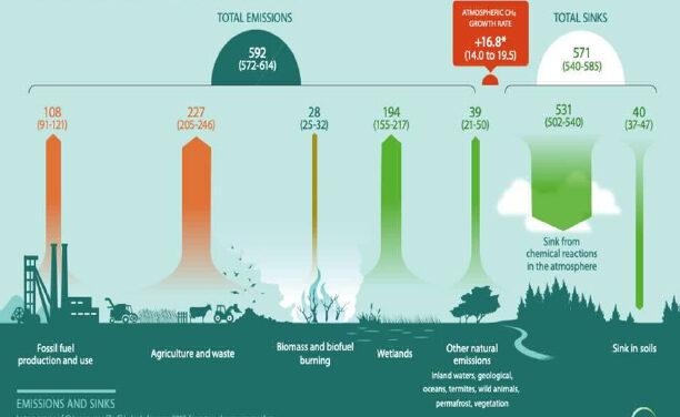Balance de emisiones de metano (2017)